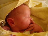 Goldpony freut sich über die Geburt von Jamie Vincent